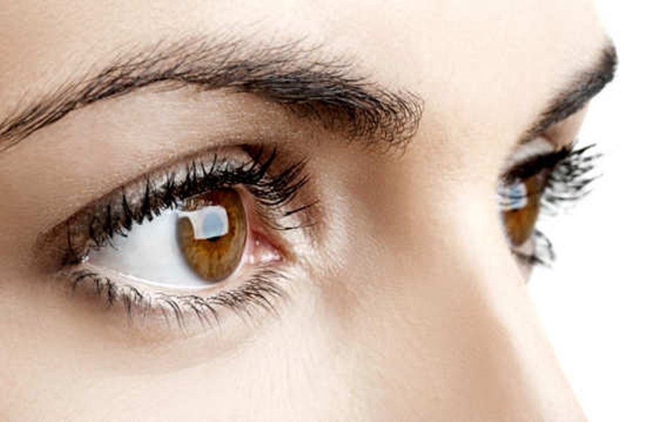 The Eyes Have It—Focusing on Eye Health | Ooltewah, TN Walk-In Clinic